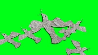 Paper Birds Green Screen (free)