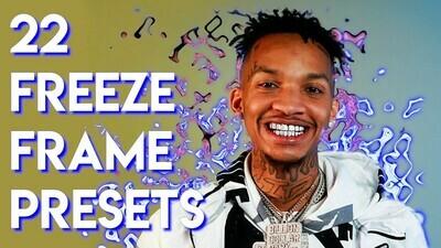 22 Distort Freeze Frame Presets