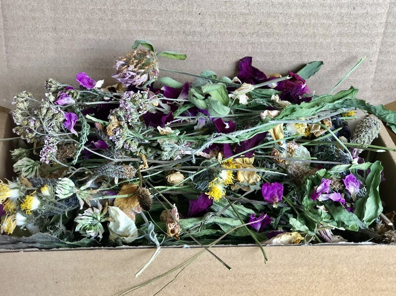 Forage & Flowers Box