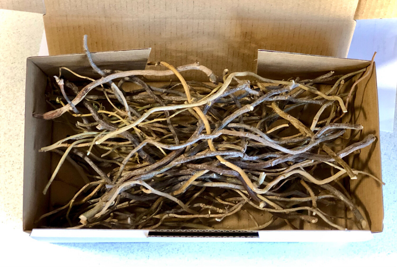 Willow Sticks & Twigs