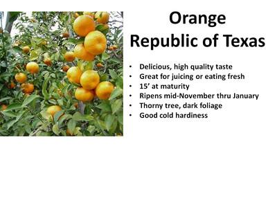 Orange, Republic of Texas
