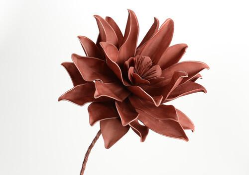 Fleur pana terracotta H84