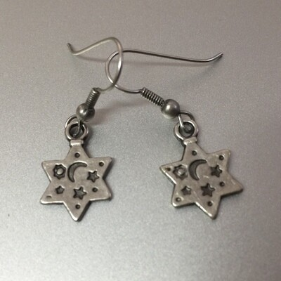 OTE-27 Silver plated earrings