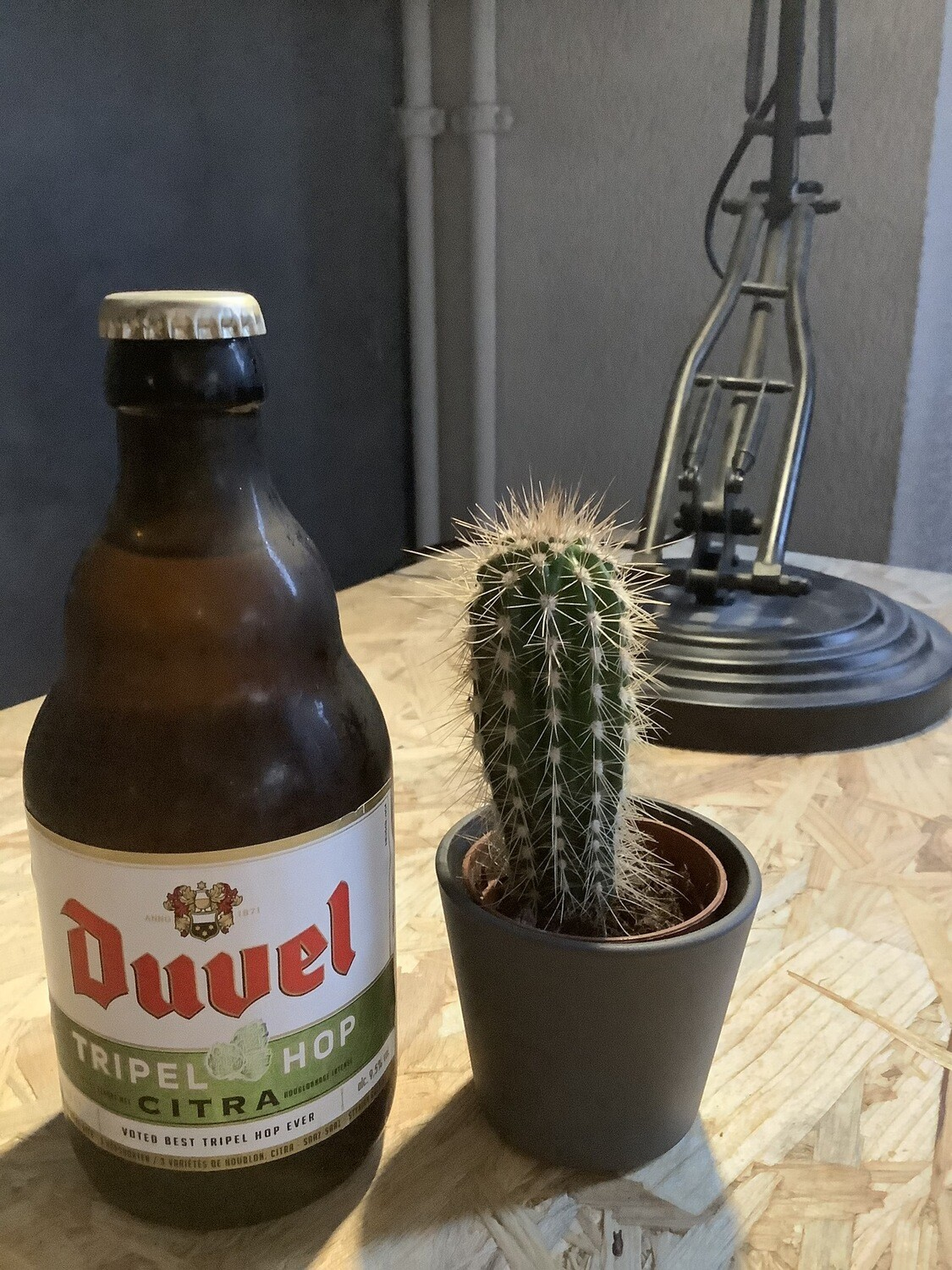 Duvel Moortgat - Tripel Hop Citra - 9,5% - 33cl
