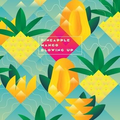 Stamm - lowing Up: Pineapple & Mango - 5% - De la pression en canettes de 50cl