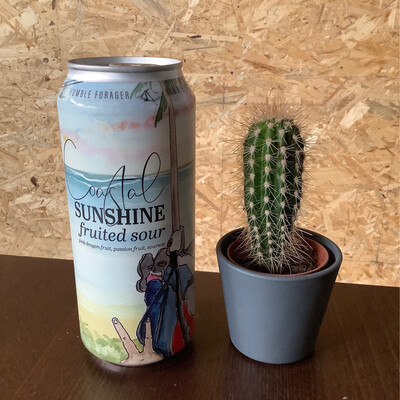 Humble Forager - Costal Sunshine #11 - 6% - 47cl