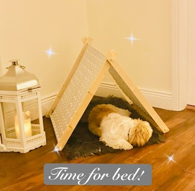Dog Teepee Tent (To Buy)