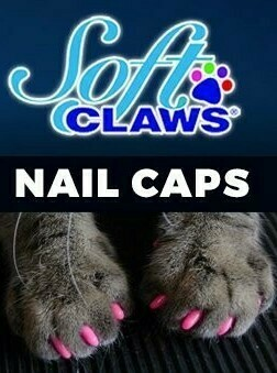SoftClaws Nail Caps for Cats
