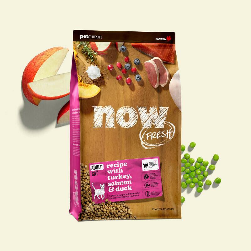 NOW FRESH Cat Food Grain-Free Adult