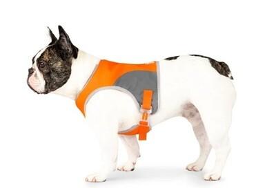 Canada Pooch High Visibility Safety Vest Orange