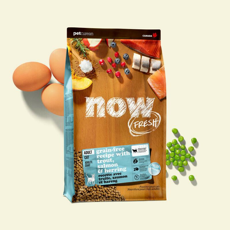 NOW FRESH Cat Food Grain-Free Adult Fish 1.36kg