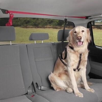 PetSafe Solvit PupZip Vehicle Zip Line