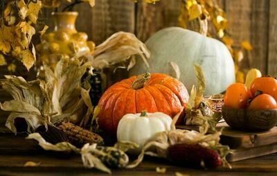 Autumn Harvest Melts