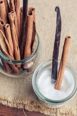 Cinnamon Vanilla Melts