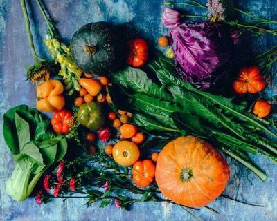 Harvest Melts
