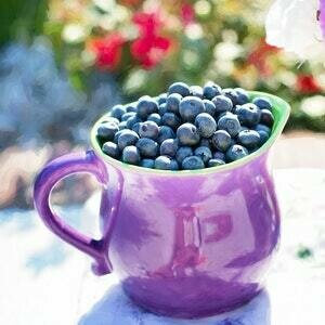 Berry Bramble Melts