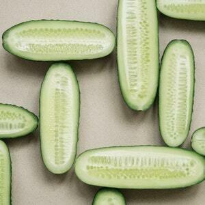 Cucumber Melon Melts