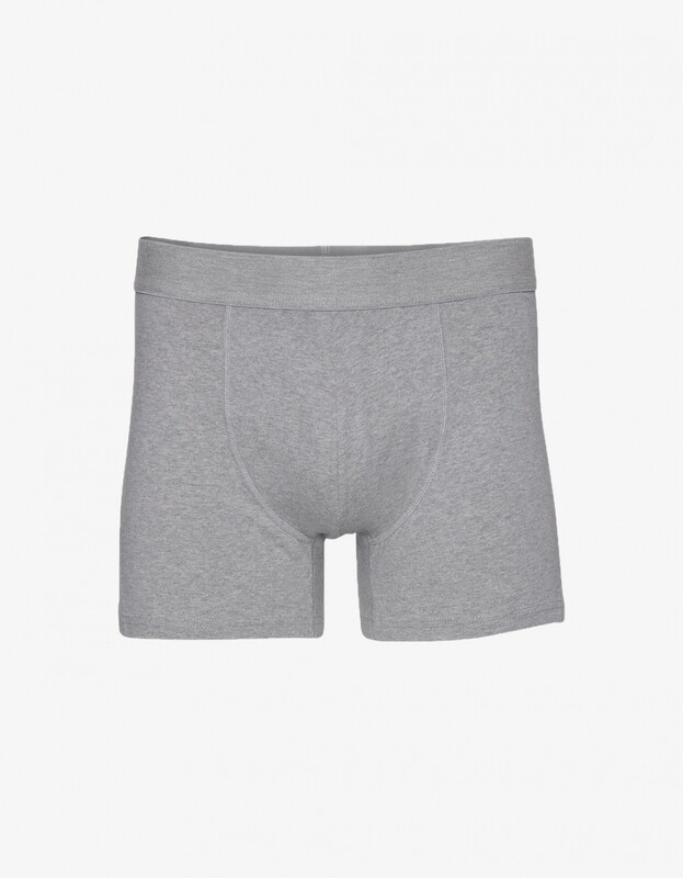 COLORFUL STANDARD BOXER BRIEFS - HEATHER GREY