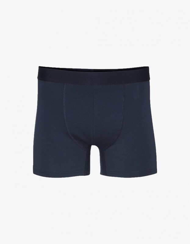 COLORFUL STANDARD BOXER BRIEFS - NAVY
