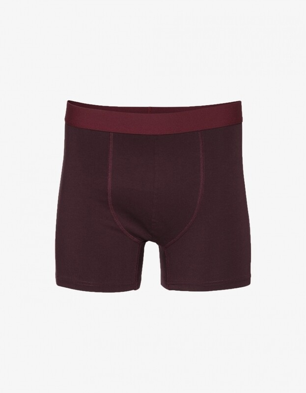 COLORFUL STANDARD BOXER BRIEFS - OXBLOOD RED