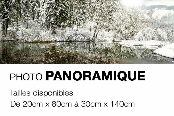 Photo sur CARTON MOUSSE - Pano_P1028906