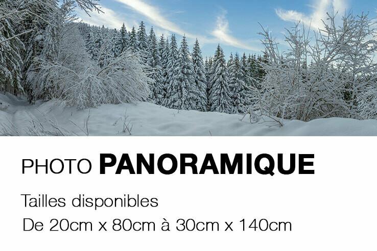 Photo sur CARTON MOUSSE - Pano_ P1028756