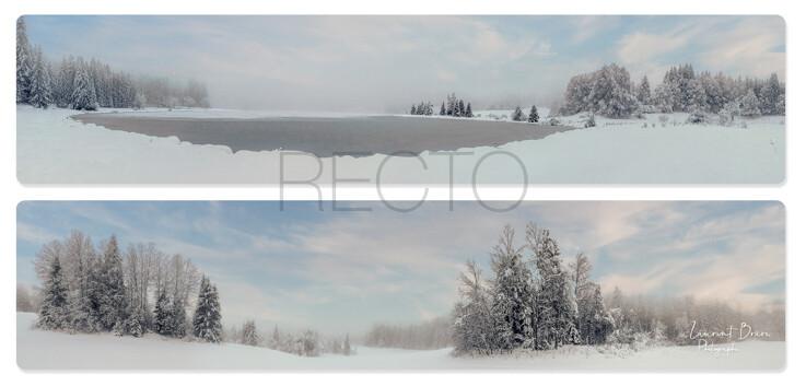 Carte postale DL - recto002