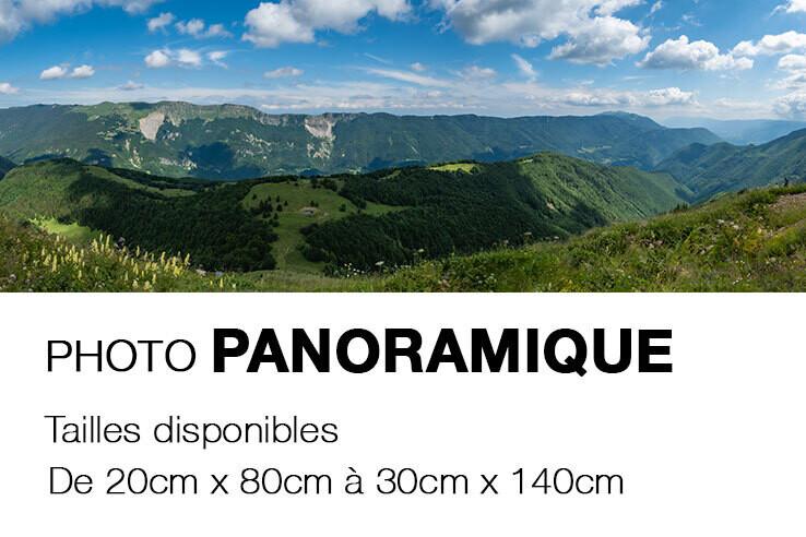 Photo sur CARTON MOUSSE - pano_CM_P1001142