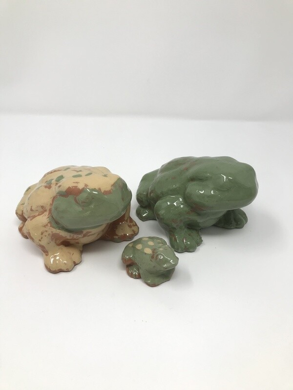 Camouflauge Frog Family