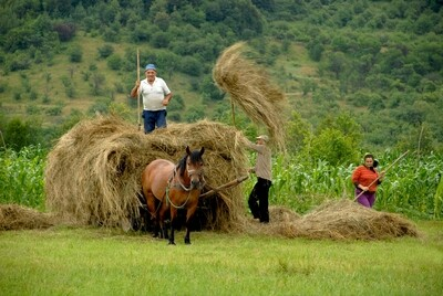 Rural Romanian Family