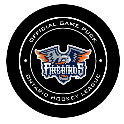 Official Game Puck