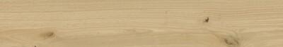 Плитка Керамогранит ELEMENT FAGGIO 20x120