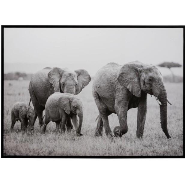 Elephant Family wood/paper framed