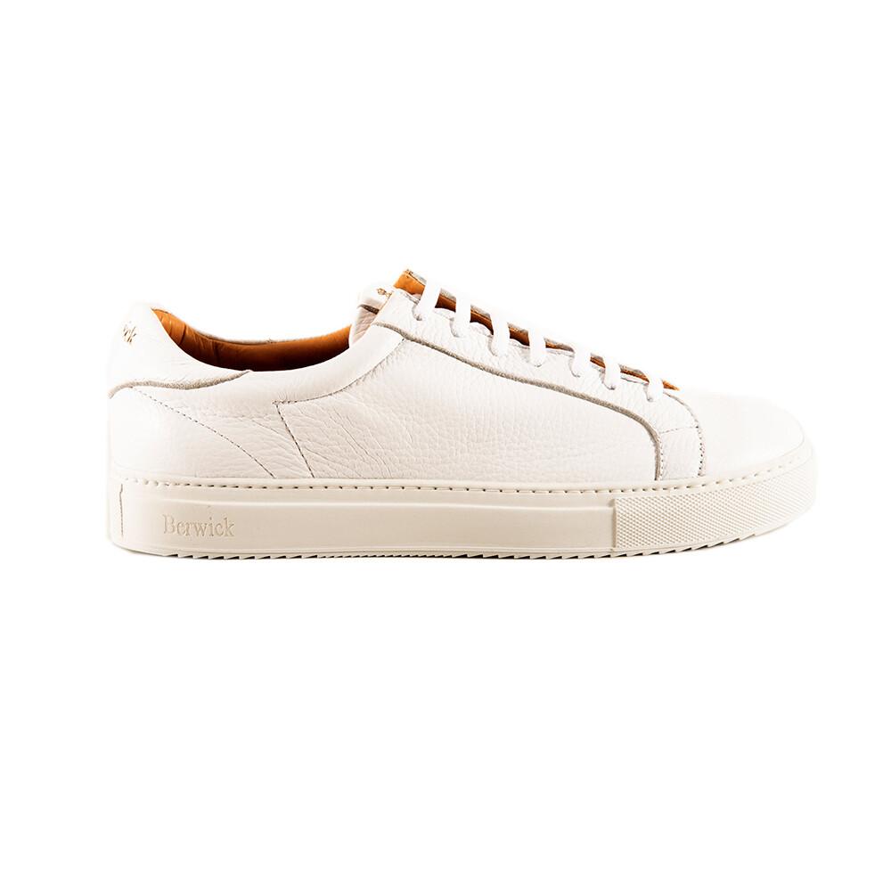 Sneakers - Berwick 1707