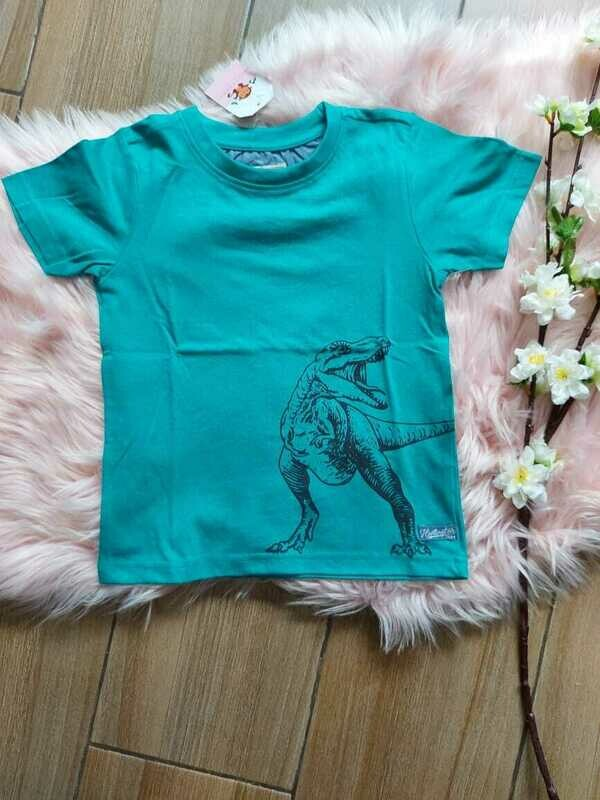 Camiseta T-Rex, 4 años