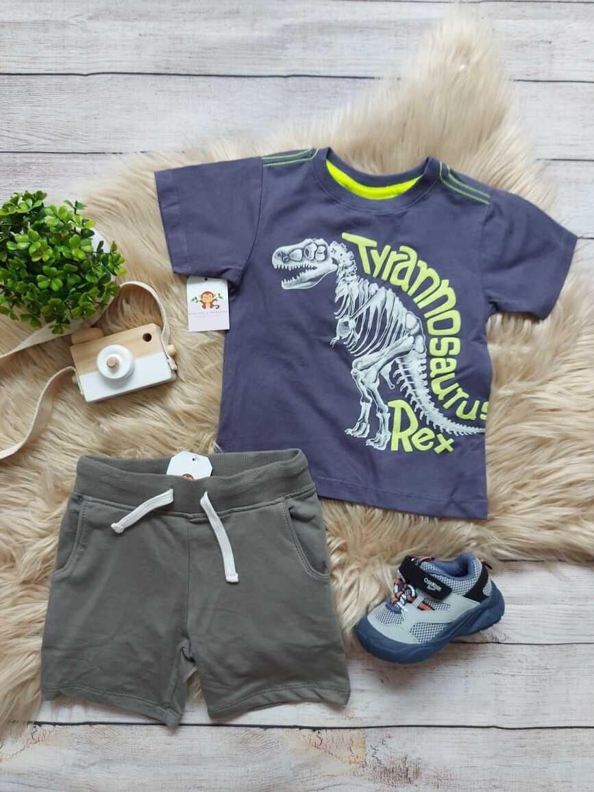 Set 2 piezas dinosaurio, camiseta azul + short verde, 24 meses