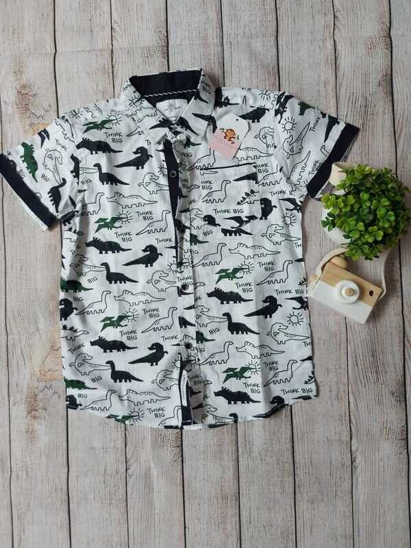 Camisa dinosaurios, 6 años