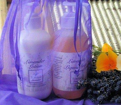Lavender Lotion & Liquid Soap Duo