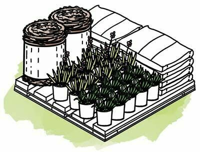DIY Rain Garden Kit - Large