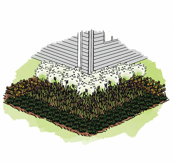 Professionally Installed Rain Garden - Large