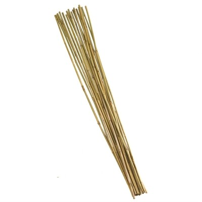 Bamboo Canes 180cm (6') 10pk