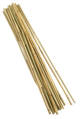 Bamboo Canes 150cm (5') 20pk