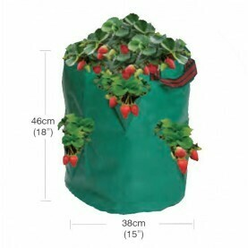 Garland Strawberry/Herb Bag