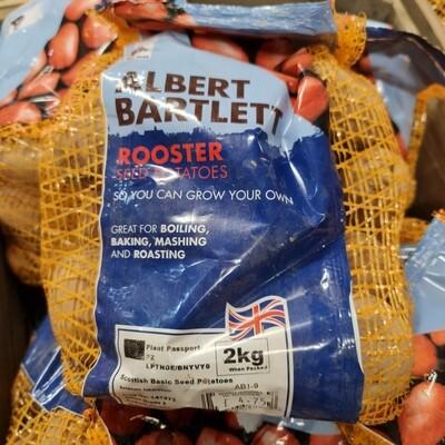 Rooster 2kg