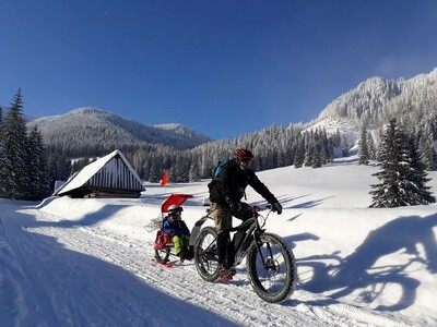 RX1 SINGLE Polar Stroller Ski