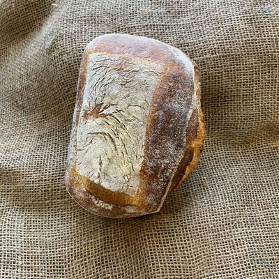 Clear Flour Rustic Italian