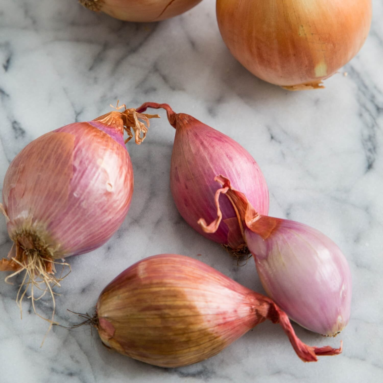 Onion, Shallots  - 1/2 Pound