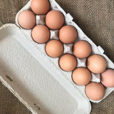 Eggs Featherbrook (Dozen)