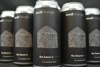 Small Change Future Is 4pk