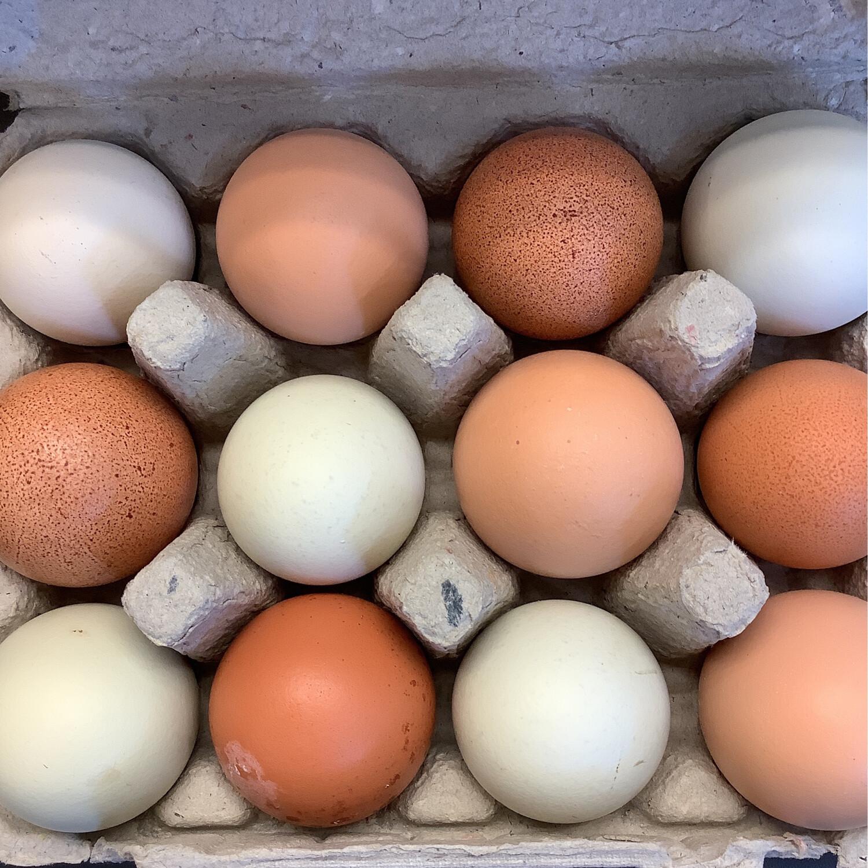 Cluck & Trowel Eggs (doz)